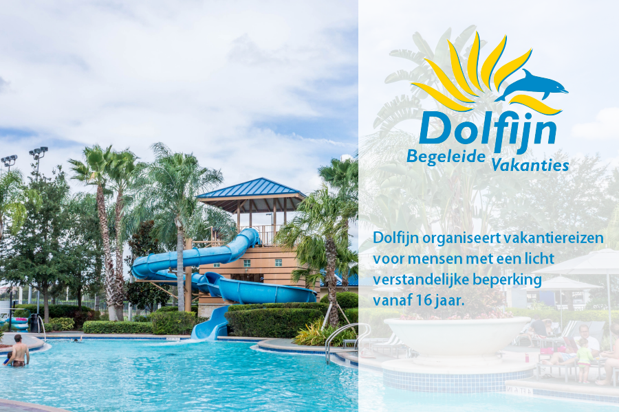 Dolfijn Vakanties